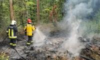 Flächenbrand Pantli